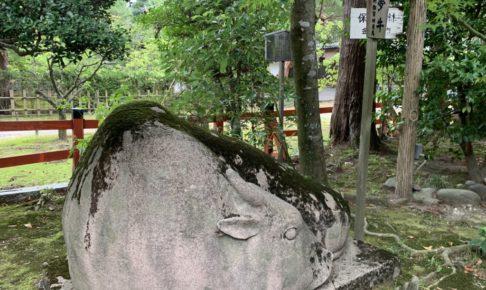 金澤神社 夢牛