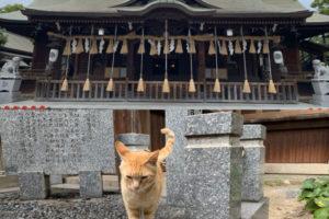 小倉 八坂神社